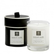 Apivita Natural Candle Royal Honey 235g