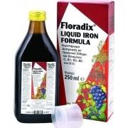 Power Health Floradix 250ml