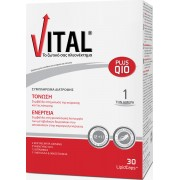 Vital Plus Q10 Πολυβιταμίνη με συνένζυμο Q10 30caps