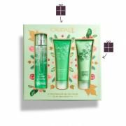 Caudalie Eau Des Vignes Fresh Fragrance 50ml & Body Lotion 50ml & Shower Gel 50ml