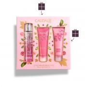 Caudalie Rose De Vigne Fresh Fragrance 50ml & Body Lotion 50ml & Shower Gel 50ml
