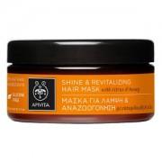 Apivita Μάσκα μαλλιών για λάμψη και αναζωογόνηση 200ml